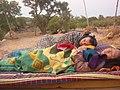 Slapen op het dak (4200036120).jpg