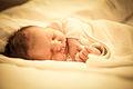 Sleeping newborn infant.jpg