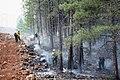 Slide Fire NW 05.24.14 (25) (14101171329).jpg