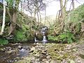 Small Waterfall near to Park Gate. - geograph.org.uk - 1248895.jpg
