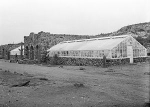 Boyce Thompson Arboretum State Park - The Smith Building with greenhouses, circa 1926.