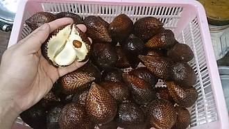 Salak - Salak exported from Indonesia
