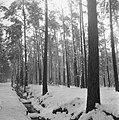 Sneeuw rond de Moerdijk, Bestanddeelnr 901-5453.jpg