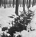 Sneeuw rond de Moerdijk, Bestanddeelnr 901-5455.jpg