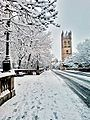Snow Magdalen Bridge.jpg