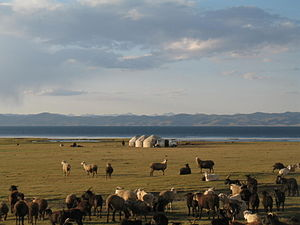 Yaylak - A modern jayloo at Song Köl in Kyrgyzstan