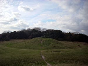 Devil's Humps, Stoughton - Barrow A from the northeast, with visible berm and ditch. The outline of a possible pond barrow is vaguely discernable in the foreground.