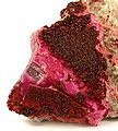 Spherocobaltite-Calcite-177519.jpg