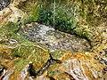Springbrunnen Haibach (2).jpg