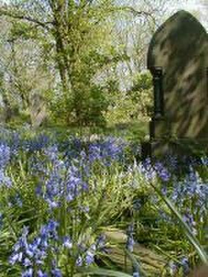 St Mary's Church, Handsworth - Spring in the Churchyard