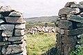 St Columba's Cell Glencolumbcille. - geograph.org.uk - 130559.jpg