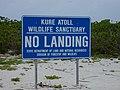 Starr-010520-0028-Lobularia maritima-habit and no landing sign-on beach-Kure Atoll (24164953939).jpg