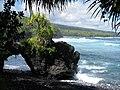 Starr-091104-0717-Pandanus tectorius-habit with lava arch-Kahanu Gardens NTBG Kaeleku Hana-Maui (24691801390).jpg