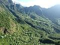 Starr-151005-0007-Aleurites moluccana-aerial view-West Maui-Maui (25679878193).jpg