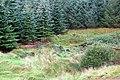 Startled Deer in Lochorodale. - geograph.org.uk - 555369.jpg