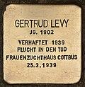 Stolperstein für Gertrud Levy (Cottbus).jpg