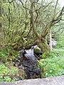 Stream - geograph.org.uk - 170969.jpg