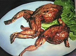 Stuffed frogs.jpg
