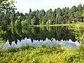 Suchar lake - panoramio (2).jpg