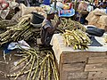 Sugarcane Wholesale Seller.jpg