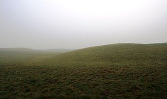 Sutton Hoo - Part of the burial ground at Sutton Hoo