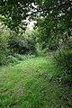 Sylvan Bridleway, looking back - geograph.org.uk - 537471.jpg