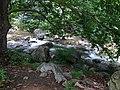 Sylvan Scene in Park - Karlovo - Bulgaria - 01 (43252004632).jpg