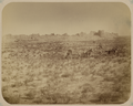 Syr-Darya Oblast. Ruins of the City of Sauran. Taken in 1871 WDL3602.png