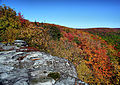 Table-rock-wv-autumn-trees - Virginia - ForestWander.jpg