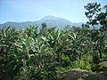 Tajumulco from La Igualdad, San Marcos, 01.jpg