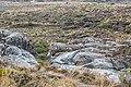 Taranaki Falls 22.jpg