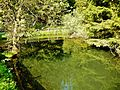Teich im Naturpark Rothaargebirge - panoramio (1).jpg