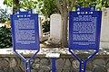 Tel-Beit-Yerakh-149.jpg
