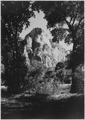 Temple of the Sun, through trees, from meadow in front of Zion Lodge. - NARA - 520536.tif