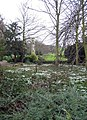 The Abbey grounds, Little Walsingham, Norfolk - geograph.org.uk - 339081.jpg