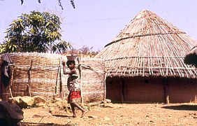The Diallo compound in Ibel, Senegal (near Kedougou) (West Africa) (418334667).jpg