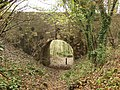 The Dry Arch - geograph.org.uk - 325133.jpg