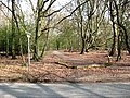 The Footpath to the Bridgewater Monument, Ashridge - geograph.org.uk - 1238239.jpg