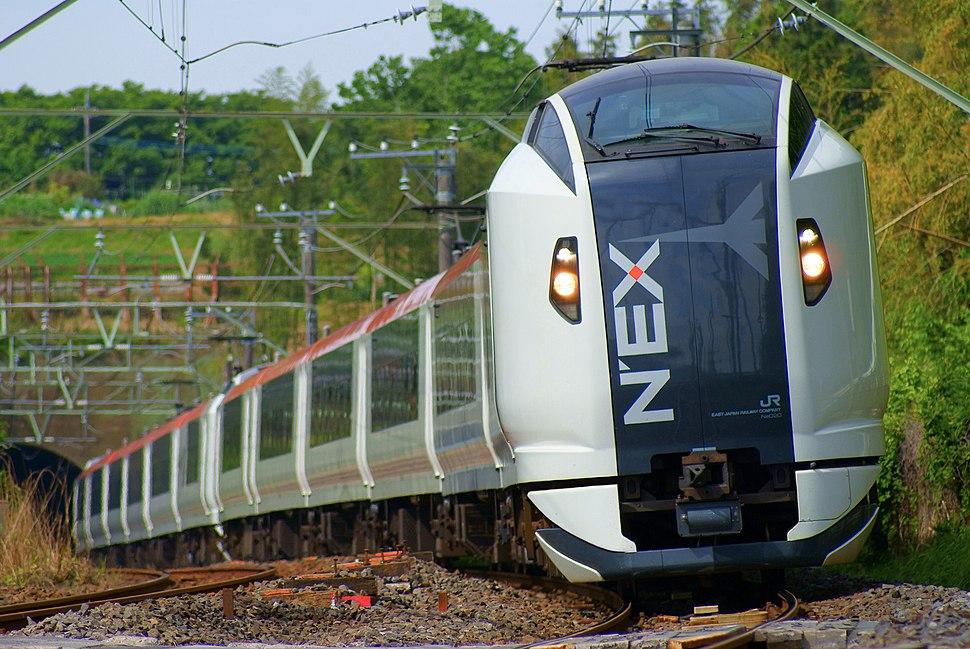 The Narita Express train running a natural woodland
