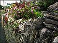 The Rock Garden. Threlkeld. - panoramio.jpg