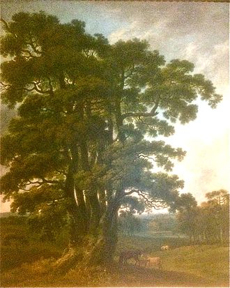 George Barret Sr. - The Severn Sisters oak in Welbeck Park by George Barrett 1765-6