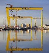 The most famous cranes in Belfast (geograph 2271975).jpg