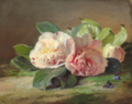 Theude Grønland - Blomstrende lyserøde pæoner.png