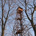Thumbnail  image of Tick Ridge Fire Tower at Cabwaylingo State Forest
