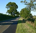 Tilton Lane, Leicestershire - geograph.org.uk - 522711.jpg