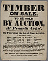 Timber on Sale to be sold by Auction 1838.jpg