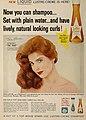Tina Louise keeps her hair soft with Liquid Lustre-Creme Shampoo, 1959.jpg