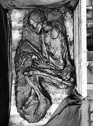 Tollund Man - The remains of Tollund Man shortly after his discovery