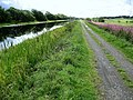 Towpath beside the Forth and Clyde Canal - geograph.org.uk - 1454775.jpg