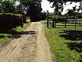 Track, Shotwick Hall Farm 1.JPG